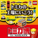 トミカ博新潟2016の混雑状況は?待ち時間や限定品を紹介します!