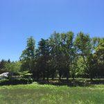 ジブリパークができる場所ってどこ?開園予定日や敷地の広さを調査!